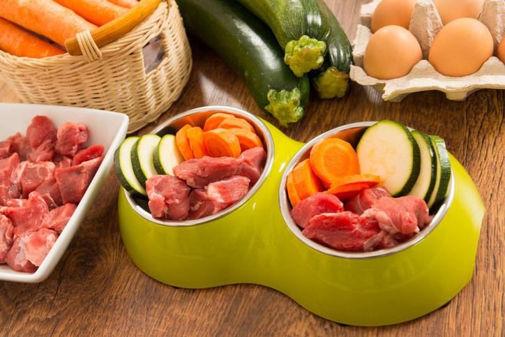 alimentazione casalinga cane cosa non deve mangiare Fido