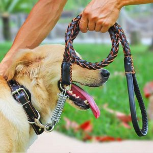 Guinzaglio per cani taglia grande
