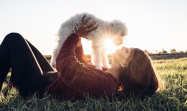 Giornata Internazionale del Cane: avere un cane ci rende più felici!